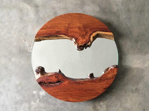 Planet Mirror No.5'